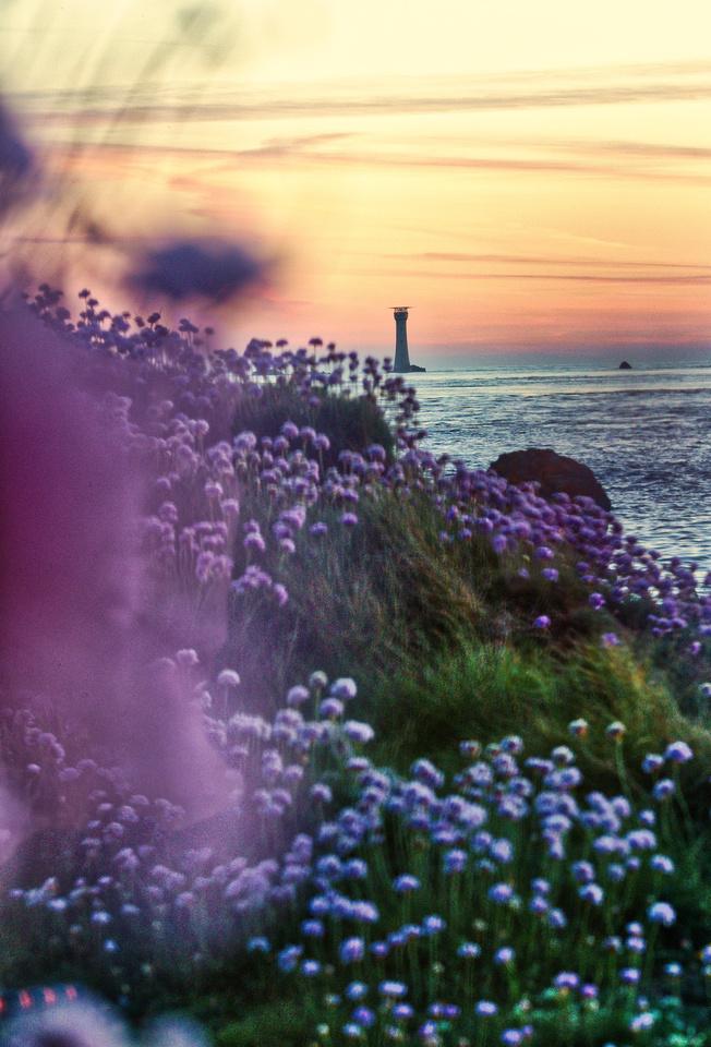 KRF_Guernsey_190519_2